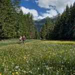 Valle d'Aosta zona bianca Ako Ay Pilipino